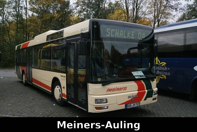 Meiners-Auling